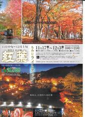虹の郷紅葉.jpg