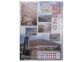 3.30桜便り_JALAN_180330.jpg