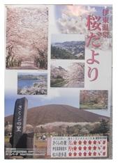 4・4桜情報_JALAN_180404.jpg