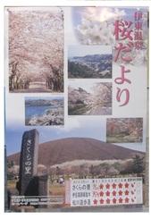4・3開花情報_JALAN_180403.jpg